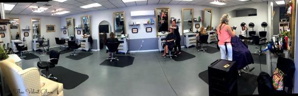 Thee Velvet Glove Elite Salon